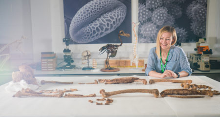 profiling a Bronze Age skeleton
